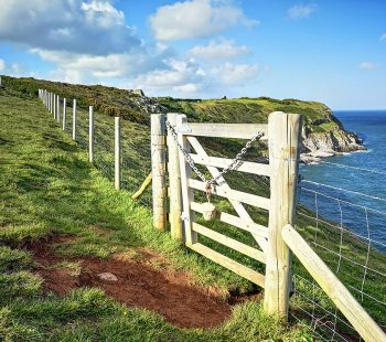 Gate-With-View